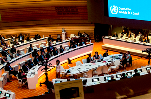 Fight the Fakes statement at World Health Assembly 69